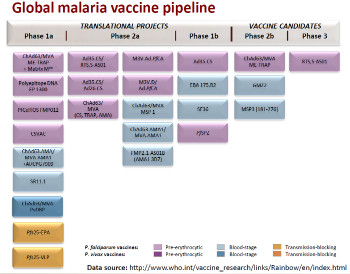 malaria vaccine development essay Accelerating malaria vaccine development about us essay contest spotlights malaria path malaria vaccine initiative.